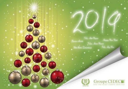 Joyeux Noël et Heureuse année 2019 de la part de toute l'équipe de CEDEC